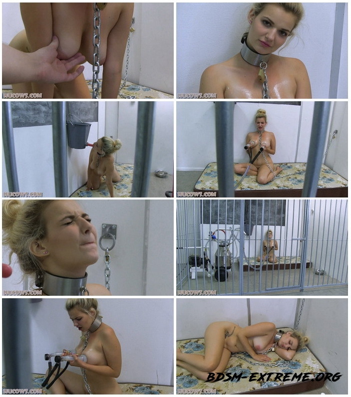 Caged HuCow With Dolly (2020/FullHD) [Hucows]