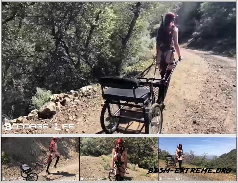 Pony Cart Walk (2020/HD) [BondageLife]