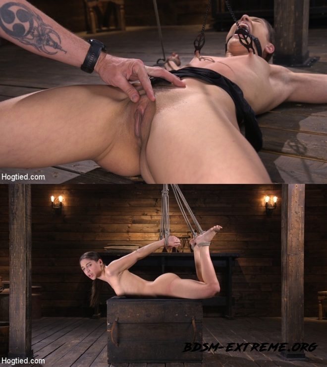 Pain Slut Abella Danger Suffers in Grueling Predicament Bondage With Abella Danger (2019/HD) [HOGTIED]