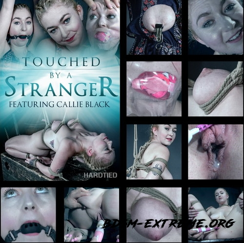 Touched by a Stranger - Neophyte Callie Black gets in over her head! With Callie Black (2019/HD) [HARDTIED]