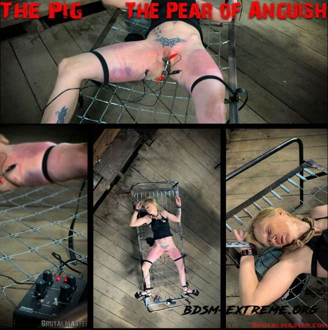 The Pig – The Pear Of Anguish (2019/FullHD) [Brutal Master]