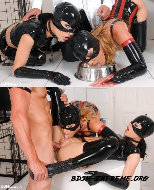 Nick Lang tames 2 beauties in cat role play With Nick Lang, Kathia Nobili, Aliz (2019/HD) [DDF NETWORK]