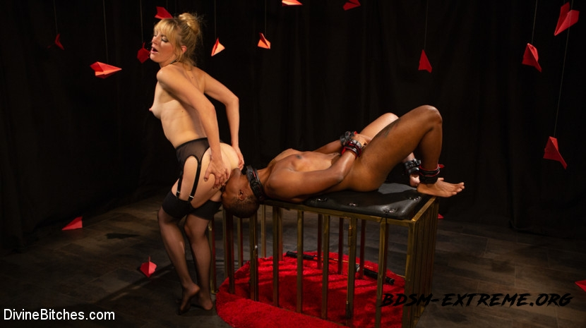 Pain, Torture, Humiliation, and Slavery With Mona Wales, Buck Wright (2020/HD) [DivineBitches]