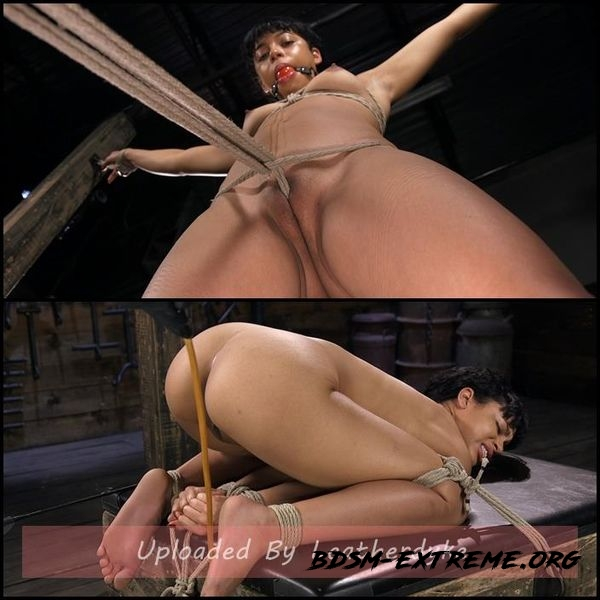 Exotic Newbie Gets Tied and Tormented at the Hands of The Pope (2020/HD)