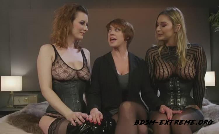 Boss Bitch Turned Anal Whore: Dee Williams Gets Double Stuffed With Kleio Valentien, Cherry Torn, Dee Williams (2017/SD) [WhippedAss, Kink]