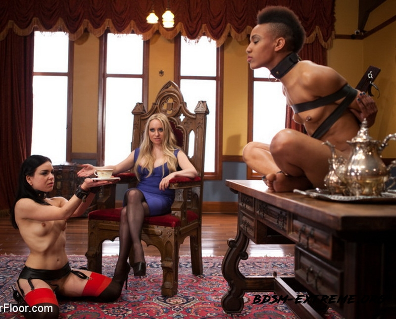 Lesbian Pussy Service With Aiden Starr, Juliette March, Nikki Darling (2013/HD) [TheUpperFloor]