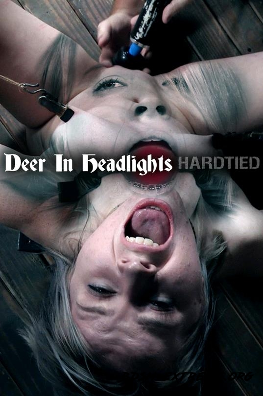 Oct 11, 2017: Deer In Headlights With Bambi Belle (2017/HD) [HardTied]