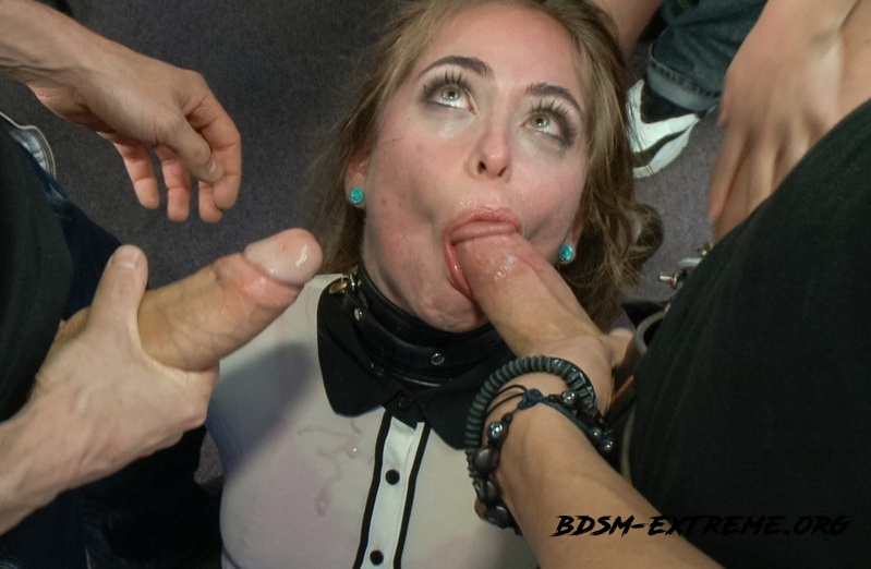 Hardcore With Riley Reid (2013/SD) [Kink]