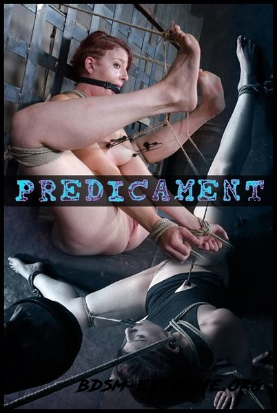 Predicament With Kel Bowie (2016/HD)
