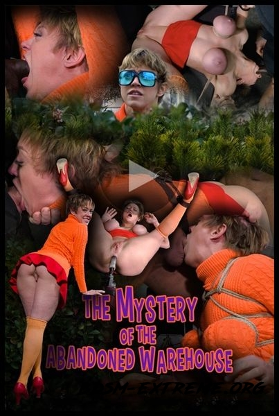 The Mystery of the Abandoned Warehouse With A Scooby Doo Parody, Feature Movie (2020/HD)