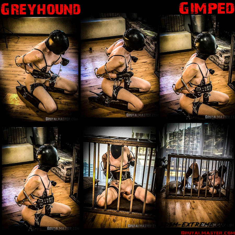 Greyhound With Rachel Greyhound (2020/HD) [BrutalMaster]