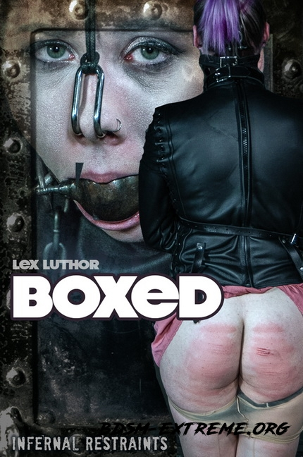 Boxed With Lex Luthor (2020/HD) [InfernalRestraints]