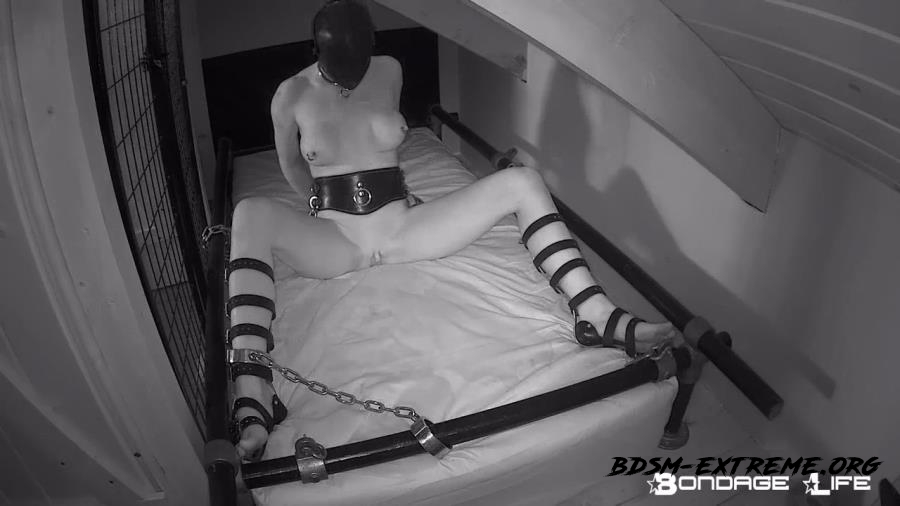 Loungin' Around With Rachel Greyhound (2020/HD) [Bondage Life]