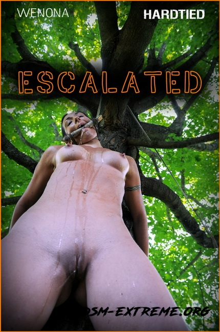 Escalated | With Wenona (2020/HD) [Hardtied]