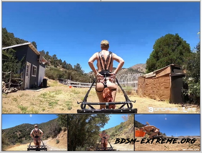 Pony Cart Ride With Rachel Greyhound (2020/HD) [Bondage Life]