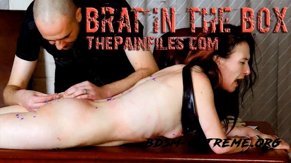 The Pain Files – Brat In The Box (2020/FullHD)