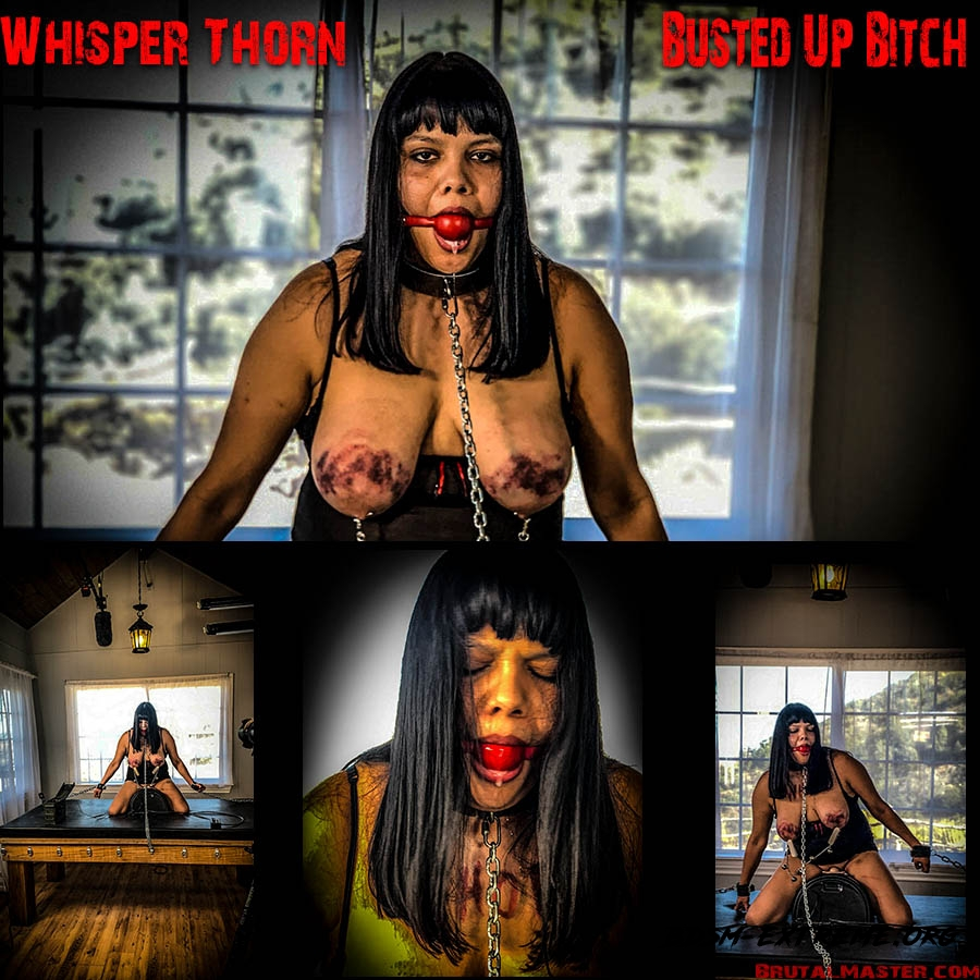 Whisper Thorn Busted Up Bitch (2020/FullHD) [BrutalMaster]